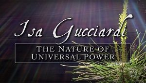 The Nature of Universal Power